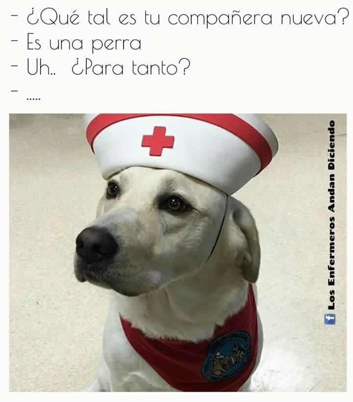 Marcianadas 271 240217000733 (286)