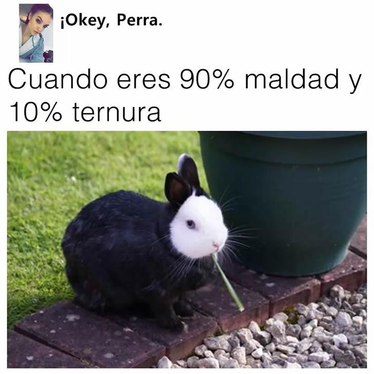 Marcianadas 271 240217000733 (299)