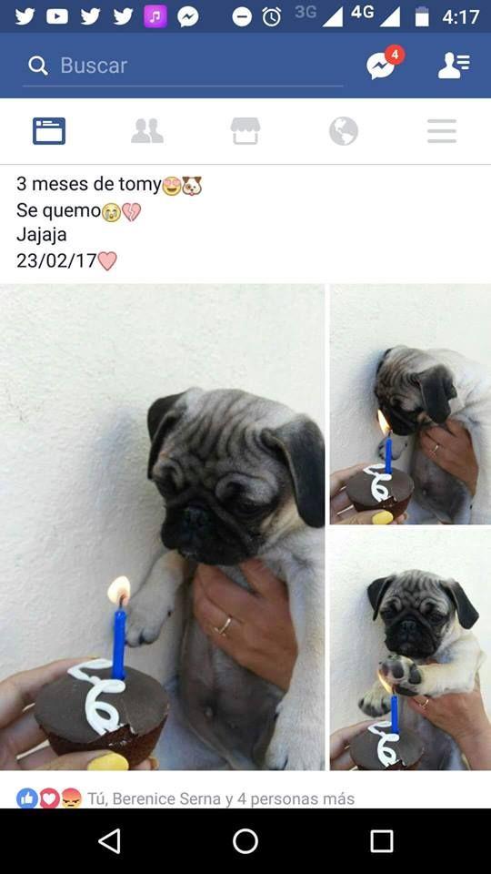 Marcianadas 271 240217112 (19)