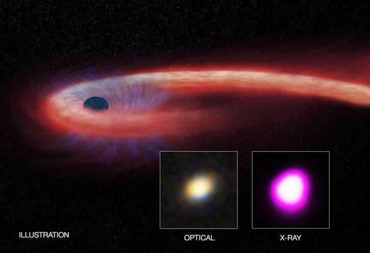 agujero negro XJ1500+0154
