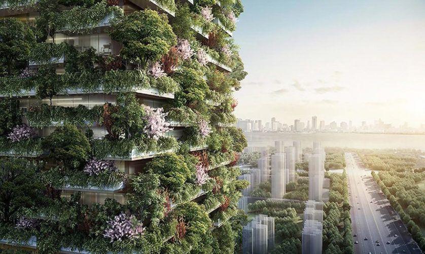 bosques verticales en nankin china (2)