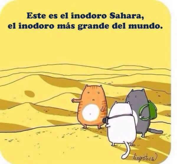 Marcianadas 274 0303170658 (168)