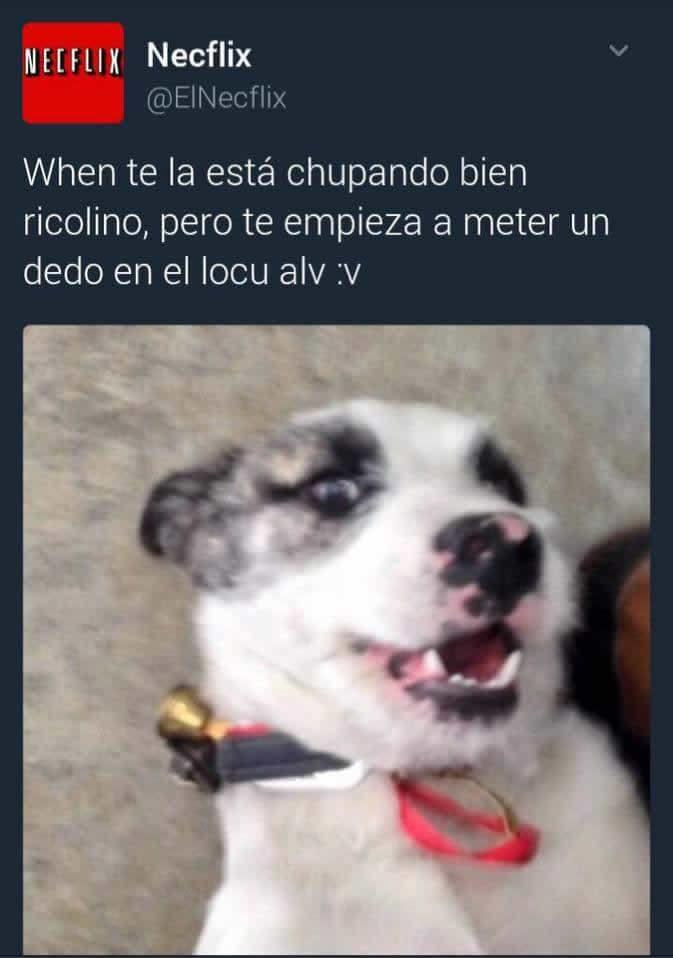Marcianadas 274 0303170658 (59)