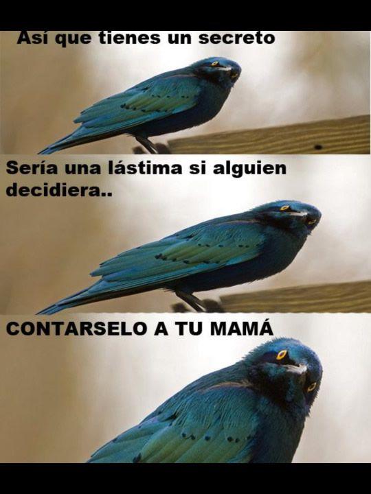 Marcianadas 274 170317000226 (121)