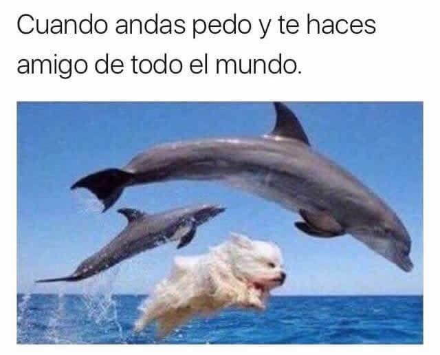 Marcianadas 274 170317000226 (141)