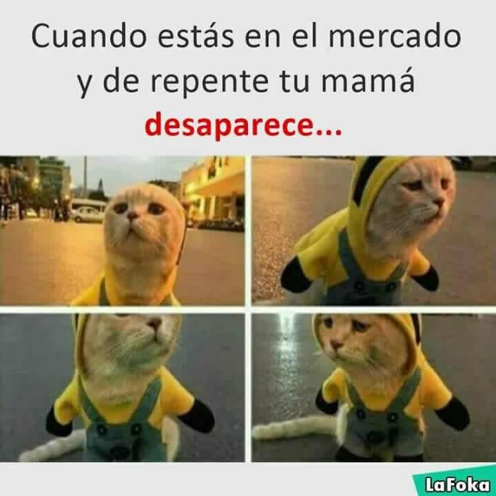 Marcianadas 274 170317000226 (252)