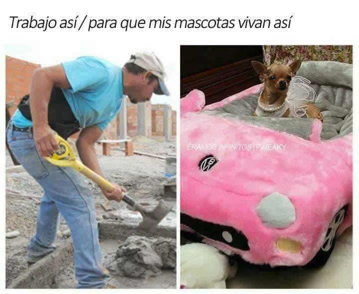 Marcianadas 275 240317000523 (106)
