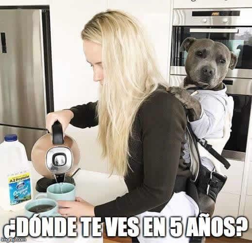 Marcianadas 275 240317000523 (156)