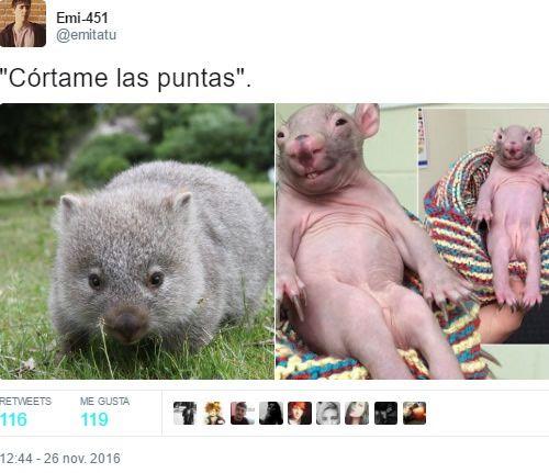 Marcianadas 275 240317000523 (181)