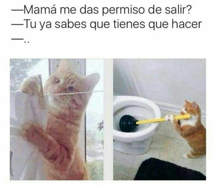 Marcianadas 275 240317000523 (192)
