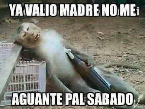 Marcianadas 275 240317000523 (306)