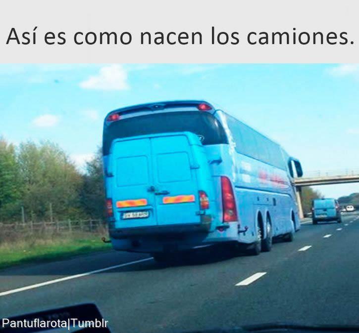 Marcianadas 276 31031700000318 (132)