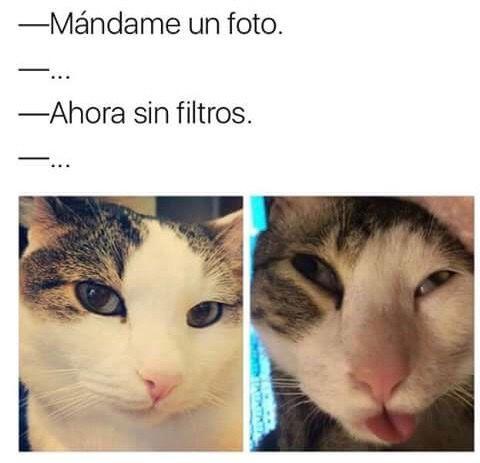 Marcianadas 276 31031700000318 (252)