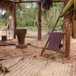 Indios del Amazonas, el pueblo más saludable del mundo