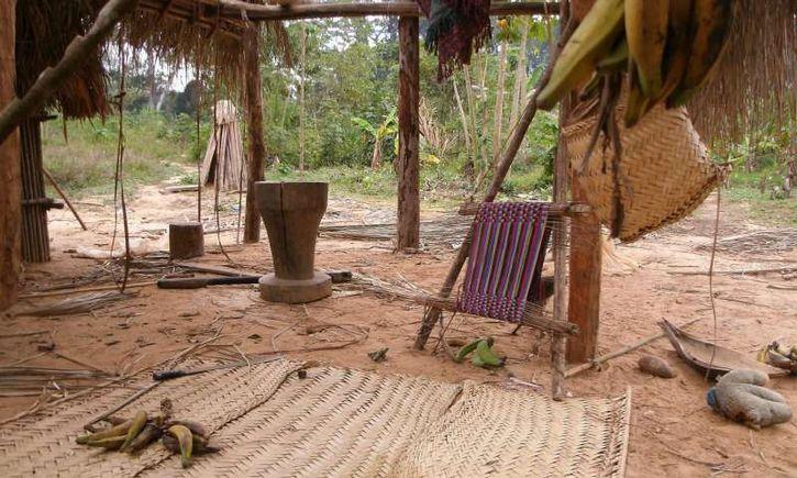 indios tsimane casa