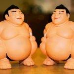 5 Datos fascinantes sobre el sumo