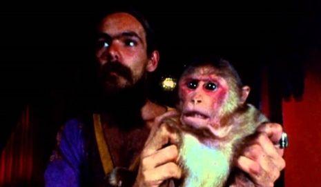 nos desayunamos un mono
