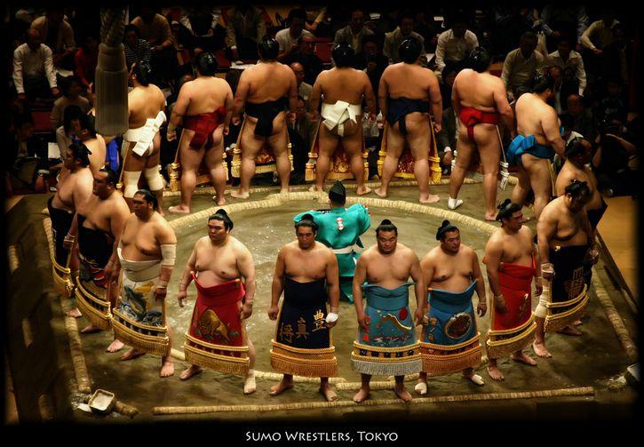 peleadores de sumo formados