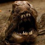 17 animales aterradores del mundo real