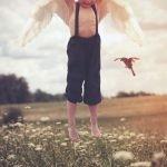 Para aprender a volar