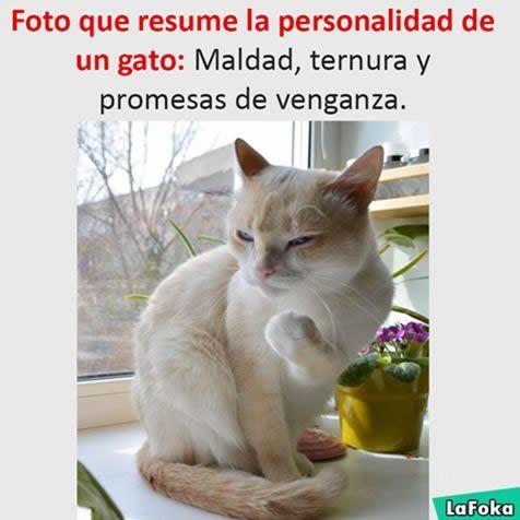 Marcianadas 277 070417000453 (145)