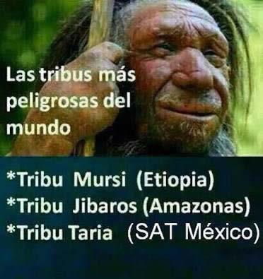 Marcianadas 277 070417000453 (20)