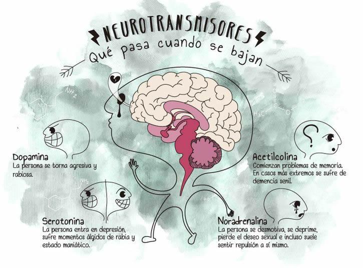 Marcianadas 278 140417000633 (127)