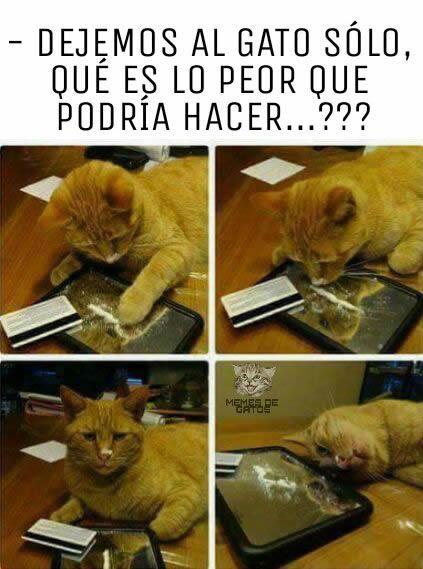 Marcianadas 278 140417000633 (144)