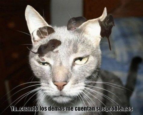 Marcianadas 278 140417000633 (16)