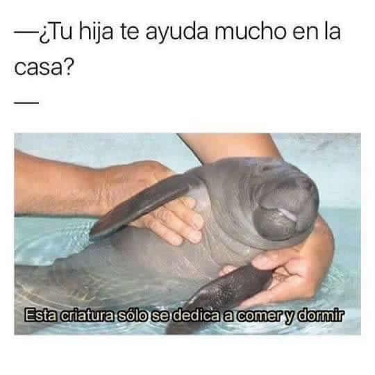 Marcianadas 278 140417000633 (241)
