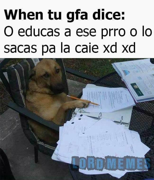 Marcianadas 278 140417000633 (29)