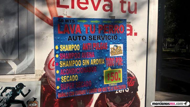 Marcianadas 279 210417001327 (288)