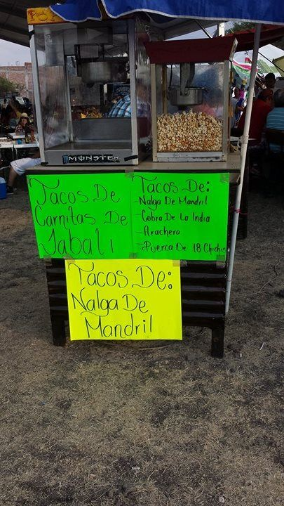 Marcianadas 279 2104171038 (7)