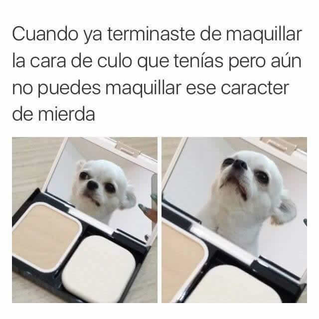Marcianadas 280 280417000557 (119)