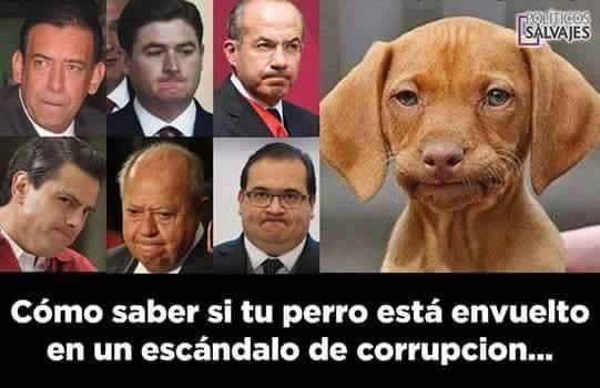 Marcianadas 280 280417000557 (138)