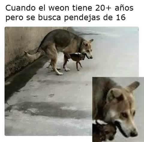 Marcianadas 280 280417000557 (170)