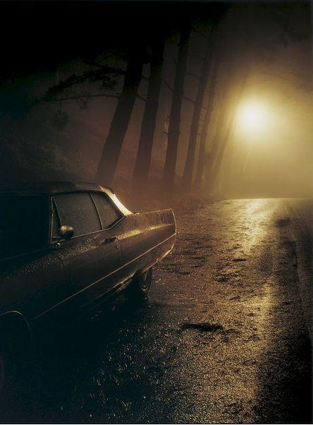 auto abandonado en el bosque terror