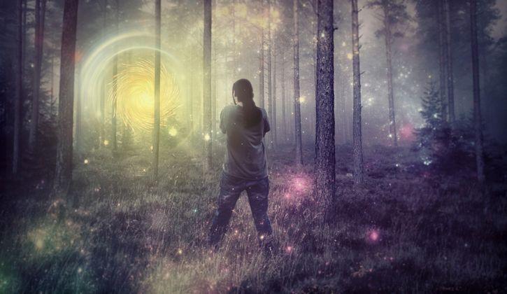 bosque abstracto paraiso portal