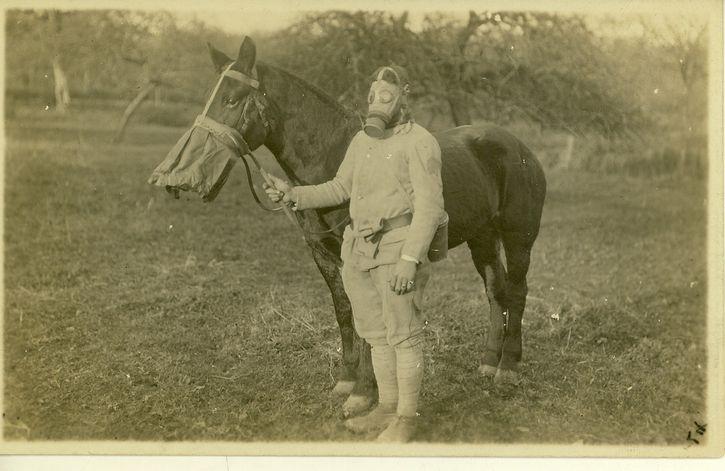 caballo y jinete con su mascara