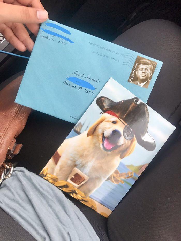 carta al perro de la ex (4)