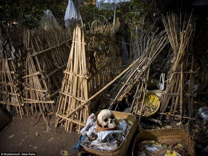 cementerio bajo arbol en trunyan bali (3)