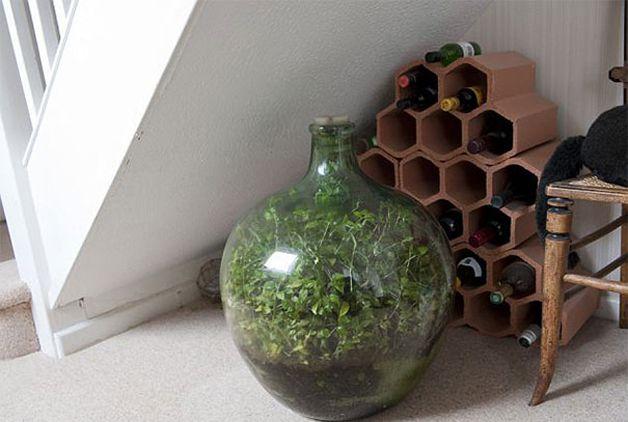 cultivo jardín botella (2)