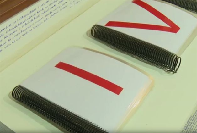 el caso de bruno borges en brasil libros dos(2)
