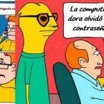 Las 5 frases más imbéciles escuchadas por técnicos de informática