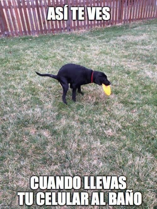 Marcianadas 281 05051700001435 (152)