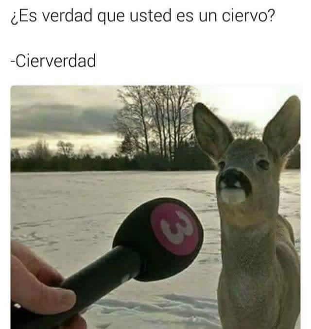 Marcianadas 281 05051700001435 (158)