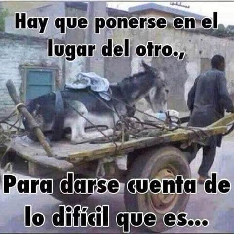 Marcianadas 281 05051700001435 (220)