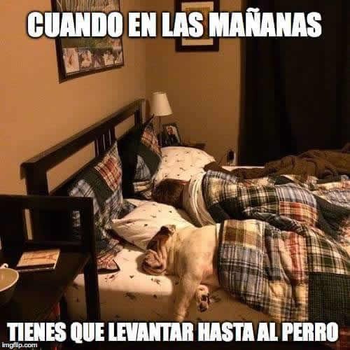Marcianadas 282 120517001543 (277)