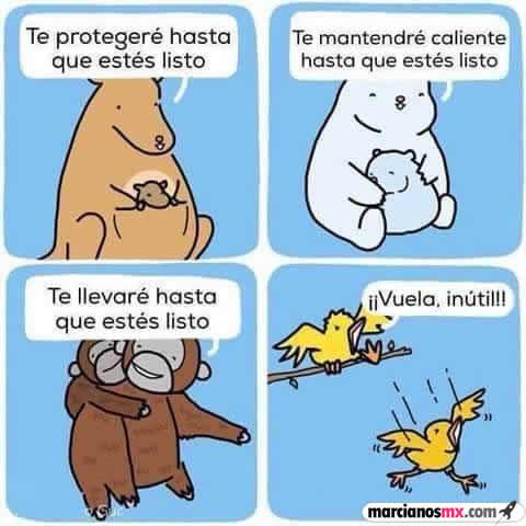Marcianadas 283 260517000906 (354)