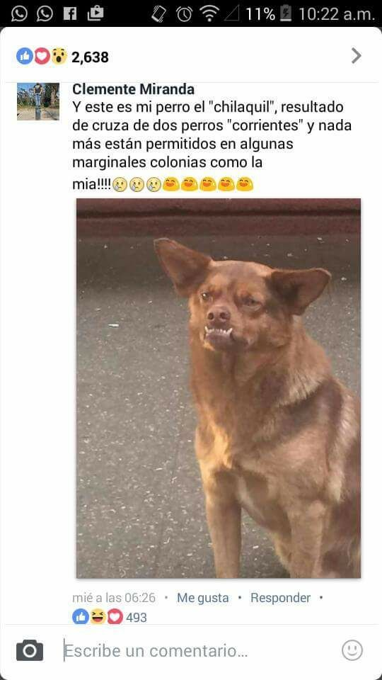 Marcianadas 283 c1 (2)